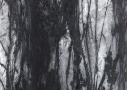Marmer-Portugal-LSI-ruivina-gezoet
