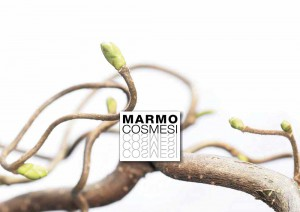 Afb.StoneTrack-catalogue_marmocosmesi